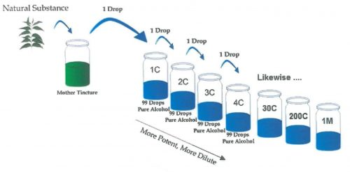 homeopathic dilutions chart